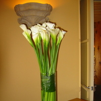 Flowers & Decor, white, green, Flowers, Flower, Calla lily