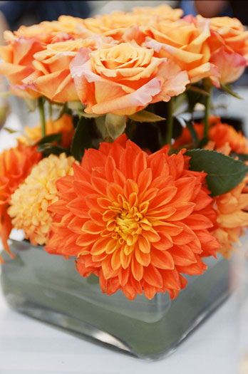 orange, Centerpieces, Fall Wedding Flowers & Decor, Summer Wedding Flowers & Decor
