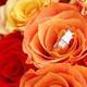 1375011900 small thumb 5001a96e6998306c0ddf03b006c62fb5