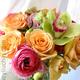 1375011937 small thumb 98e8ca80d38b847143a0681b6abda6c2