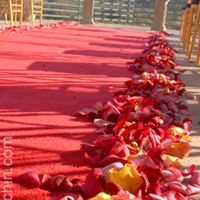 Flowers & Decor, red, Ceremony Flowers, Aisle Decor, Beach Wedding Flowers & Decor, Summer Wedding Flowers & Decor