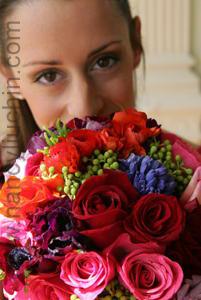 Flowers & Decor, orange, pink, red, Flowers, Nancy liu chin