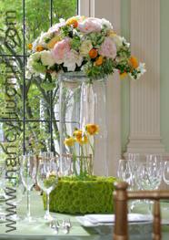 Flowers & Decor, green, Flowers, Nancy liu chin