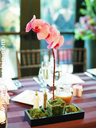 Flowers & Decor, pink, Centerpieces, Flowers, Centerpiece, Nancy liu chin