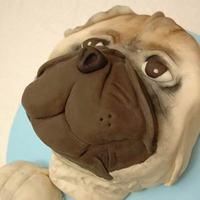 Cakes, cake, Dog