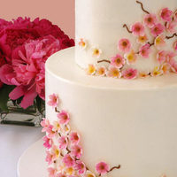 Cakes, pink, cake, Cherry blossom