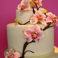 Cakes, cake, Orchid