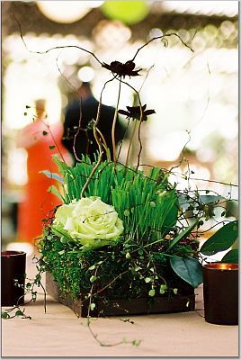 Flowers & Decor, green, brown, Centerpieces, Flowers