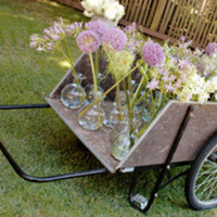 Flowers & Decor, Centerpieces, Flowers, Centerpiece, Water lily pond, Wheelbarrow