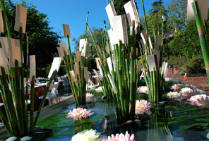 Flowers & Decor, Flowers, Name cards, Water lily pond, Water, Bamboo
