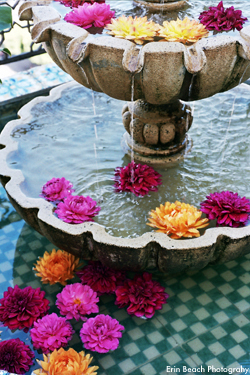 Flowers & Decor, Decor, yellow, pink, red, Flowers, Fountain, Water lily pond