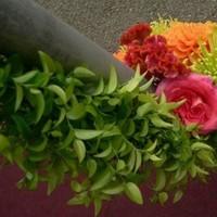 Flowers & Decor, Decor, yellow, red, green, Flowers