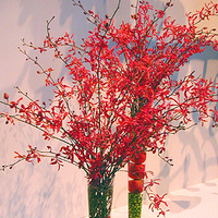 Flowers & Decor, red, green, Centerpieces, Flowers, Centerpiece, Wiggy flowers, Tall