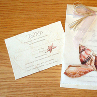 Stationery, pink, Beach, Invitations, Mine by design, Shells