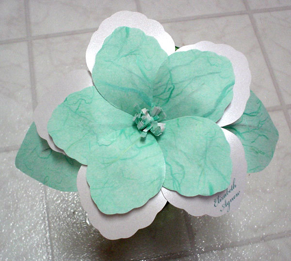 Flowers & Decor, Favors & Gifts, blue, Favors, Flowers, Mine by design