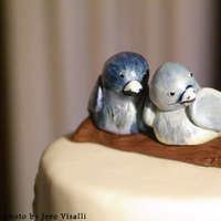 Cakes, blue, cake, Bird, Branching out cakes
