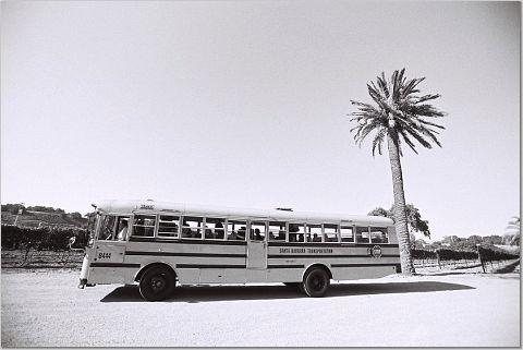 Transportation, Schoolbus
