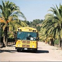 Ceremony, Flowers & Decor, yellow, Transportation, Schoolbus