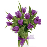 Flowers & Decor, purple, Centerpieces, Flowers, Centerpiece, Cattails, Tulip
