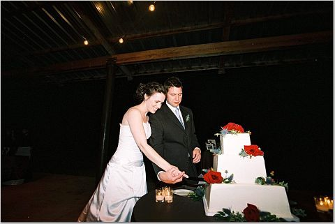 Bride, Groom, Cake cutting