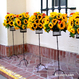 Flowers & Decor, yellow, Flowers, Nicole ha, Sunflowers