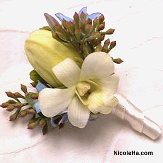 Flowers & Decor, Boutonnieres, Flowers, Nicole ha, Boutonniere