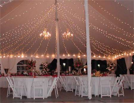 Reception, Flowers & Decor, white, Lighting, Contemporary catering and event planning services, Contemporary catering