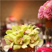 Flowers & Decor, pink, green, brown, Centerpieces, Flowers, Centerpiece, Paradise delight