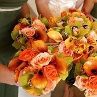 Flowers & Decor, orange, green, Flowers, Paradise delight