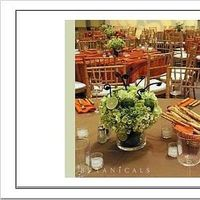 Reception, Flowers & Decor, green, brown, Centerpieces, Flowers, Centerpiece