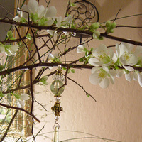 Flowers & Decor, Flowers, Cherry blossom, Blossom, Floralisa weddings, Branch, Hanging