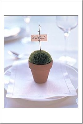 Flowers & Decor, green, brown, Flowers, Placecard, Mazama
