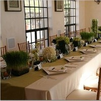 Reception, Flowers & Decor, green, Centerpieces, Flowers, Centerpiece, Kallalily
