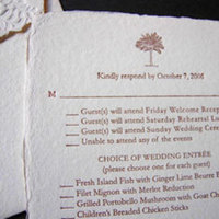 Stationery, brown, Invitations, Tree, Papel vivo
