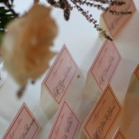 pink, Name cards