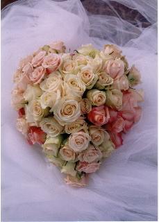 Julies flowers