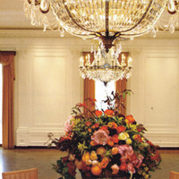 Reception, Flowers & Decor, Decor, orange, Neil adams event resources