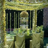 Reception, Flowers & Decor, Decor, green, Neil adams event resources