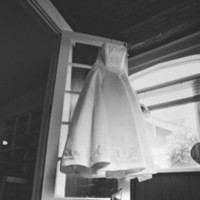 Wedding Dresses, Fashion, dress, Dog, Atticus