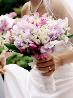 purple, Bouquet, Photos