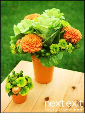 Flowers & Decor, orange, green, Flower, Next exit photography, Fleurs du jour