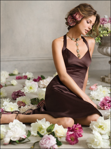 Bridesmaids, Bridesmaids Dresses, Fashion, brown, Jim hjelm