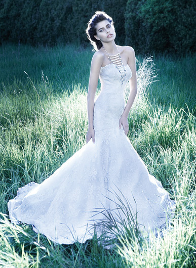 Wedding Dresses, Mermaid Wedding Dresses, Fashion, dress, Mermaid, Jim hjelm