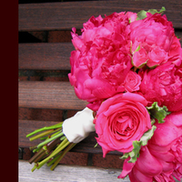 Flowers & Decor, pink, Bride Bouquets, Flowers, Bouquet, Simply blooms