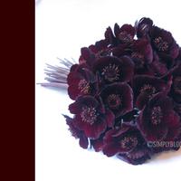 Flowers & Decor, brown, Bride Bouquets, Flowers, Bouquet, Simply blooms