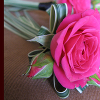 Flowers & Decor, pink, Boutonnieres, Flowers, Boutonniere, Simply blooms