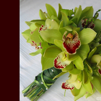Flowers & Decor, green, Bride Bouquets, Flowers, Bouquet, Simply blooms