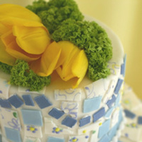 Cakes, yellow, blue, green, cake, Butterfly cakes