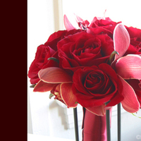 Flowers & Decor, red, Bride Bouquets, Flowers, Bouquet, Simply blooms