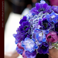 Flowers & Decor, blue, Bride Bouquets, Flowers, Bouquet, Simply blooms